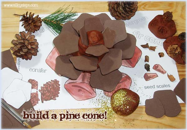 Pine cone model making using brown playdough