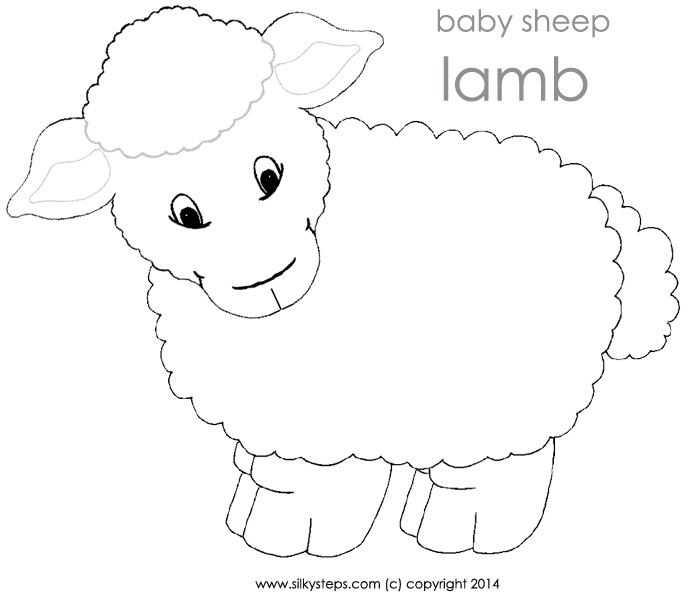 Sheep lamb outline template   playdough mat